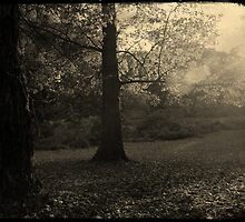 In due time, Autumn too vanishes by Chrissybloom