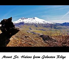 Mount St. Helens from Johnston Ridge by danahunter