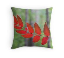red autumn, Olympic Peninsula , Washington State Throw Pillow
