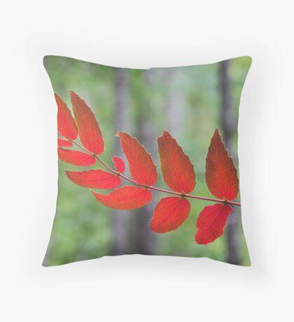 red autumn, Olympic Peninsula , Washington State Throw Pillow