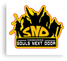Codename: Souls Next Door Canvas Print