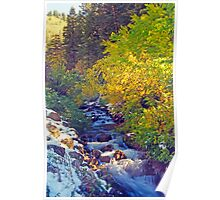 Autumn Stream 4 - Millcreek Canyon, Utah, USA Poster
