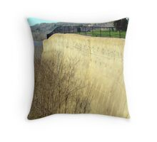 Cemented Mountain Lookout In Natchez, Mississippi.   Throw Pillow