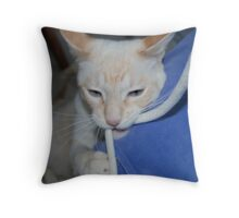 Playing With Baby Oscar the Adult Cat Throw Pillow