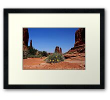 """ Tracks in the Dust"" Framed Print"
