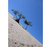 Dunes Askew Photographic Print