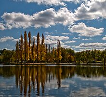 Lake Burley Griffin 1 by Claire Haslope
