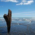 Whakapapa O Wairua by Jody Saturday