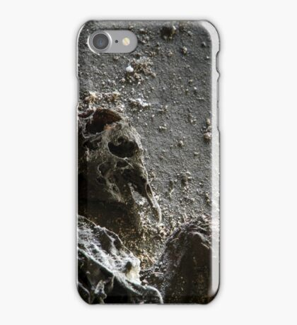 1.5.2015: Dead Bird III iPhone Case/Skin
