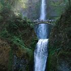 Light Infusion - Multnomah Falls Oregon by Barbara Burkhardt
