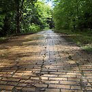Old Brick Road by Molly  Kinsey