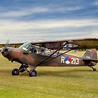Piper L-21A Super Cub R-213 PH-RED by Colin Smedley