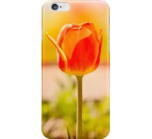 Red Tulip iPhone Case/Skin