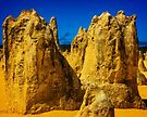 Pinacles @ Nambung Nat. Park by Yukondick