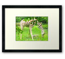 Fractal Giraffe Framed Print