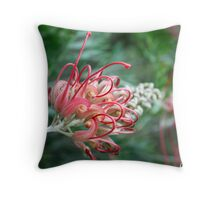 Australian Grevillia Flower Throw Pillow