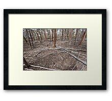 Mallet Forest - After the Tempest Framed Print