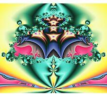 Starflower Boquet #1 Photographic Print