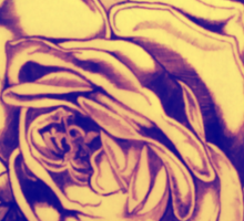 Hand Drawn Roses with ink on canvas and yellow and blue filter. Sticker