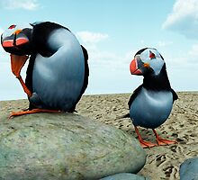 Puffins Rock by Ken Gilliland