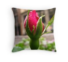 Bud in the City Throw Pillow