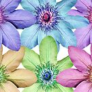 Clematis Pattern by iOpeners
