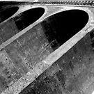 eynsford viaduct by Bimal Tailor