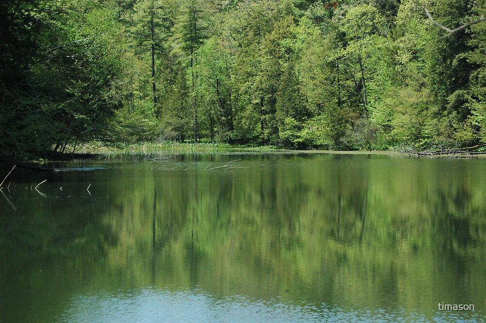 Yaddo Lake by timason