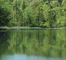 Yaddo Lake by timason