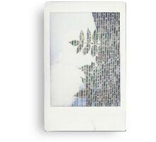 Nature's Stonework Canvas Print