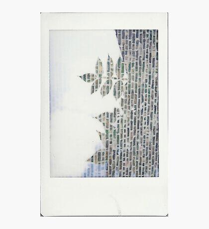 Nature's Stonework Photographic Print