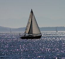 Sailboat by Rhonda R Clements