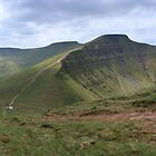 Pen y Fan from Cribyn by Michael Field