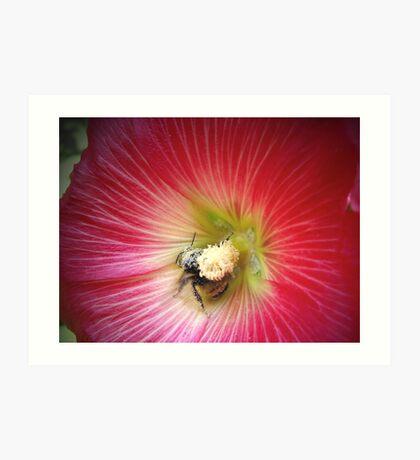 Pollenated! Art Print