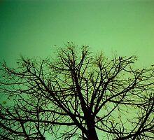 Arbre Vert by louba