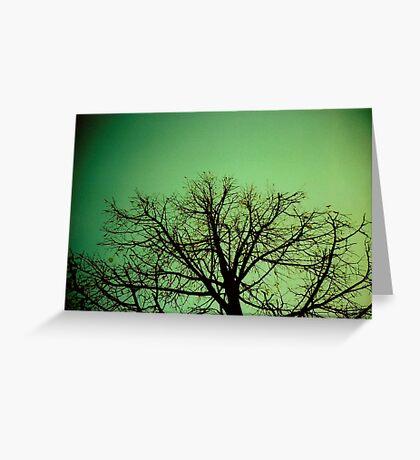 Arbre Vert Greeting Card
