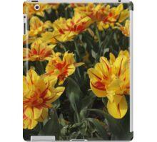 tulips flowers iPad Case/Skin