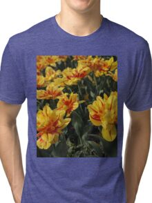 tulips flowers Tri-blend T-Shirt