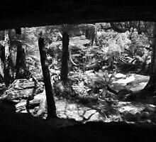 Cave Window  by petersargison