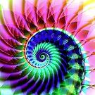 Spiraling Down by Virginia N. Fred