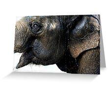 Exuberant Elephant Greeting Card