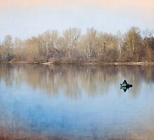 Solitude on the Lake by MaxalTamor