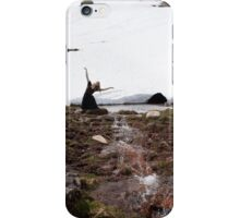 Xana de la fuente iPhone Case/Skin