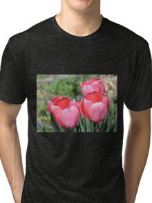 Four Pink Tulips Tri-blend T-Shirt