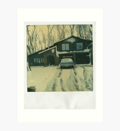 Winter Abode Art Print