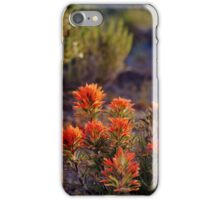 Palomino Valley Indian Paintbrush iPhone Case/Skin