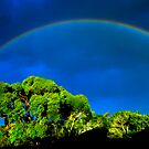 Raindrops  and Rainbows by Neophytos