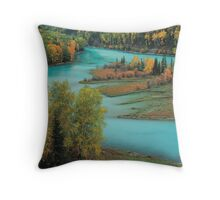 Beauty in nature Throw Pillow
