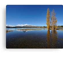 landscape of lake Tekapo in south New Zealand Canvas Print