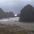 Rocky Beach by twodoggardens